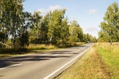 Strada di autunno sul cielo blu del fondo Fotografie Stock Libere da Diritti