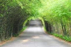 Strada di bambù immagini stock