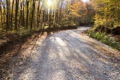 Strada di bianco di autunno fotografia stock