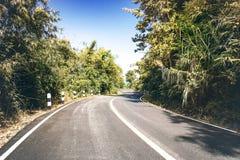 Strada di bobina attraverso il fondo della natura della foresta Immagini Stock