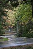 Strada di bobina bagnata attraverso il fogliame piacevole di autunno fotografie stock
