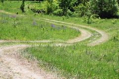 Strada di bobina nella natura Fotografia Stock
