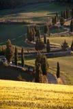 Strada di bobina in Toscana Immagine Stock Libera da Diritti