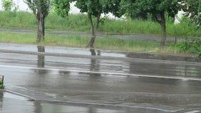 Strada di città sotto pioggia persistente di estate senza le automobili archivi video
