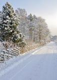 Strada di countrside di Snowy Fotografia Stock Libera da Diritti