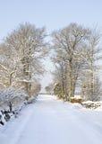 Strada di countrside di Snowy Fotografia Stock