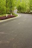Strada di Forest Park Fotografia Stock Libera da Diritti
