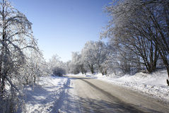 Strada di inverno. Fotografia Stock