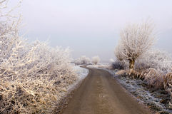 Strada di inverno immagine stock libera da diritti