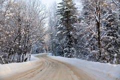 Strada di inverno di bobina Fotografia Stock Libera da Diritti