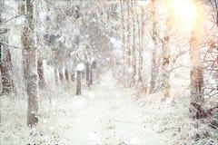 Strada di inverno di Snowy Fotografia Stock