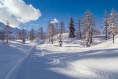 Strada di inverno di Snowy in Julian Alps Immagine Stock Libera da Diritti