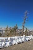 Strada di inverno nel parco nazionale in California, U.S.A. Fotografie Stock Libere da Diritti