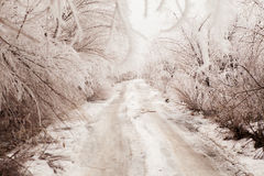 Strada di inverno tonificata nella seppia Immagini Stock Libere da Diritti