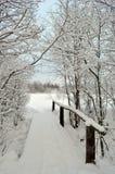 Strada di inverno tramite il ponte Fotografie Stock