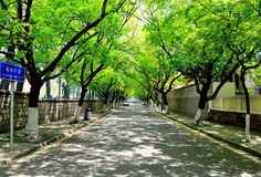 Strada di Jiayuguan nella città di Qingdao, Cina Fotografia Stock