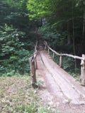 Strada di legno della natura del vecchio ponte Immagini Stock