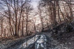 Strada di legno nel cattivo stato fotografia stock libera da diritti