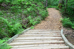 Strada di legno nella foresta Sigulda fotografia stock