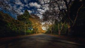 Strada di Long Island Fotografie Stock