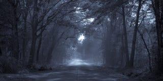 Strada di luce della luna Fotografia Stock Libera da Diritti