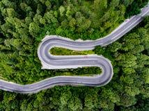 Strada di piegamento curva nella foresta Fotografie Stock