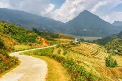 Strada di piegamento fra i terrazzi del riso agli altopiani di PA del Sa, Vietnam Fotografia Stock