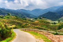 Strada di piegamento fra i terrazzi del riso in montagne di PA del Sa, Vietnam Fotografia Stock Libera da Diritti
