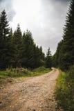 Strada di pietra in montagne Fotografia Stock