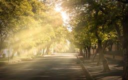 Strada di Rendelsham, Kimberley immagine stock