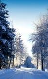 Strada di Snowy… Immagine Stock Libera da Diritti