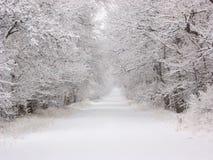 Strada di Snowy Fotografia Stock