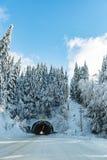 Strada di Snowy in legno negli Stati Uniti Fotografia Stock Libera da Diritti