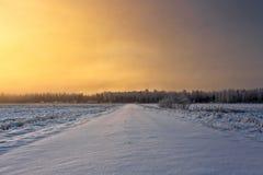 Strada di Snowy nell'alba di inverno Immagine Stock Libera da Diritti
