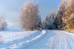 Strada di Snowy nelle montagne Fotografia Stock Libera da Diritti