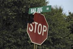 Strada difettosa del cane! Immagini Stock Libere da Diritti