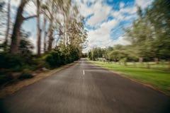 Strada diritta con gli alberi in entrambi i lati concetto ad alta velocità Fotografia Stock
