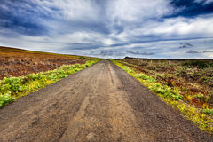 Strada diritta della ghiaia nell'isola di pasqua Immagini Stock Libere da Diritti