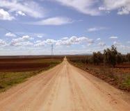 Strada diritta fra i giacimenti del vino nella primavera Fotografie Stock Libere da Diritti