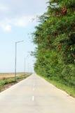 Strada diritta vicino alla foresta Fotografia Stock