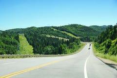 Strada in discesa con le montagne e le conifere Immagine Stock