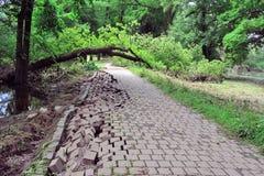 Strada distrutta nell'inondazione Fotografie Stock Libere da Diritti