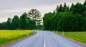 Strada dopo la pioggia Fotografia Stock