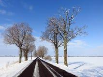 Strada e bei alberi nevosi nell'inverno, Lituania Fotografie Stock Libere da Diritti