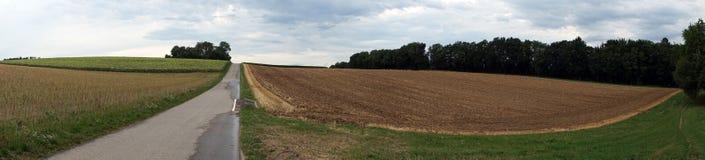Strada e farmfield Immagini Stock