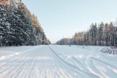 Strada e foresta di inverno Fotografia Stock