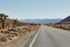 Strada e montagna in parco nazionale, U.S.A. Fotografie Stock