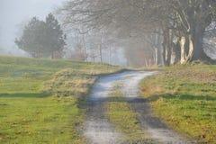 Strada e nebbia Fotografia Stock