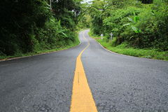 Strada e nebbia. Fotografie Stock Libere da Diritti