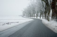 Strada e neve di bobina Fotografia Stock